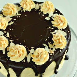 Nanaimo Layer Cake