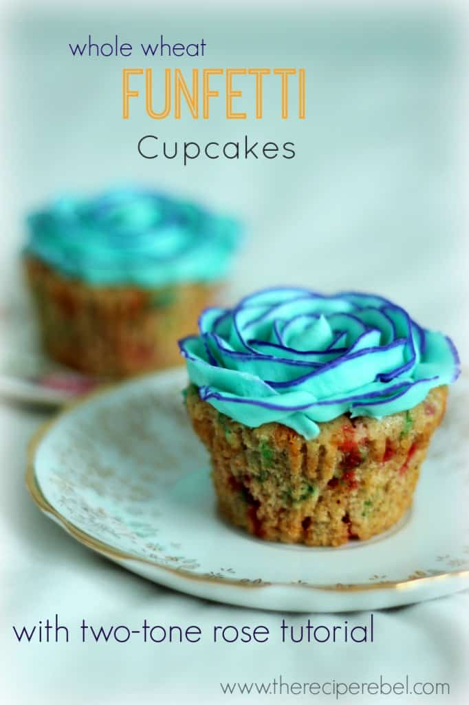 whole wheat funfetti cupakes with two tone blue buttercream rose on white plate