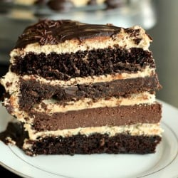 The Ultimate Chocolate Peanut Butter Cake