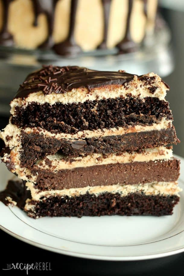 piece of chocolate peanut butter cake showing cake layers cheesecake layer and cookie layer