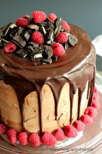Raspberry Oreo Mocha Cheesecake Cake with Parachute Coffee