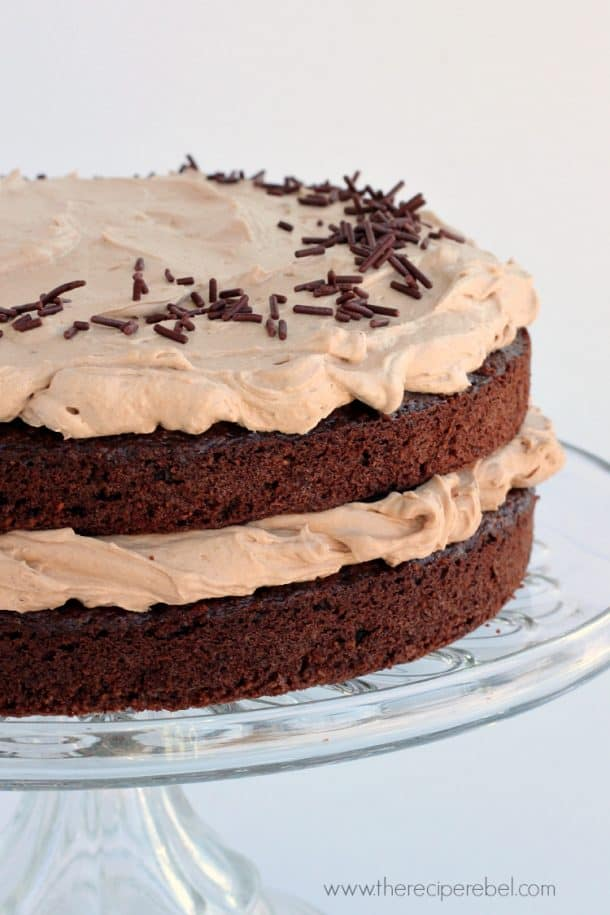 close up of mexican chocolate cake with chocolate frosting with chocolate sprinkles