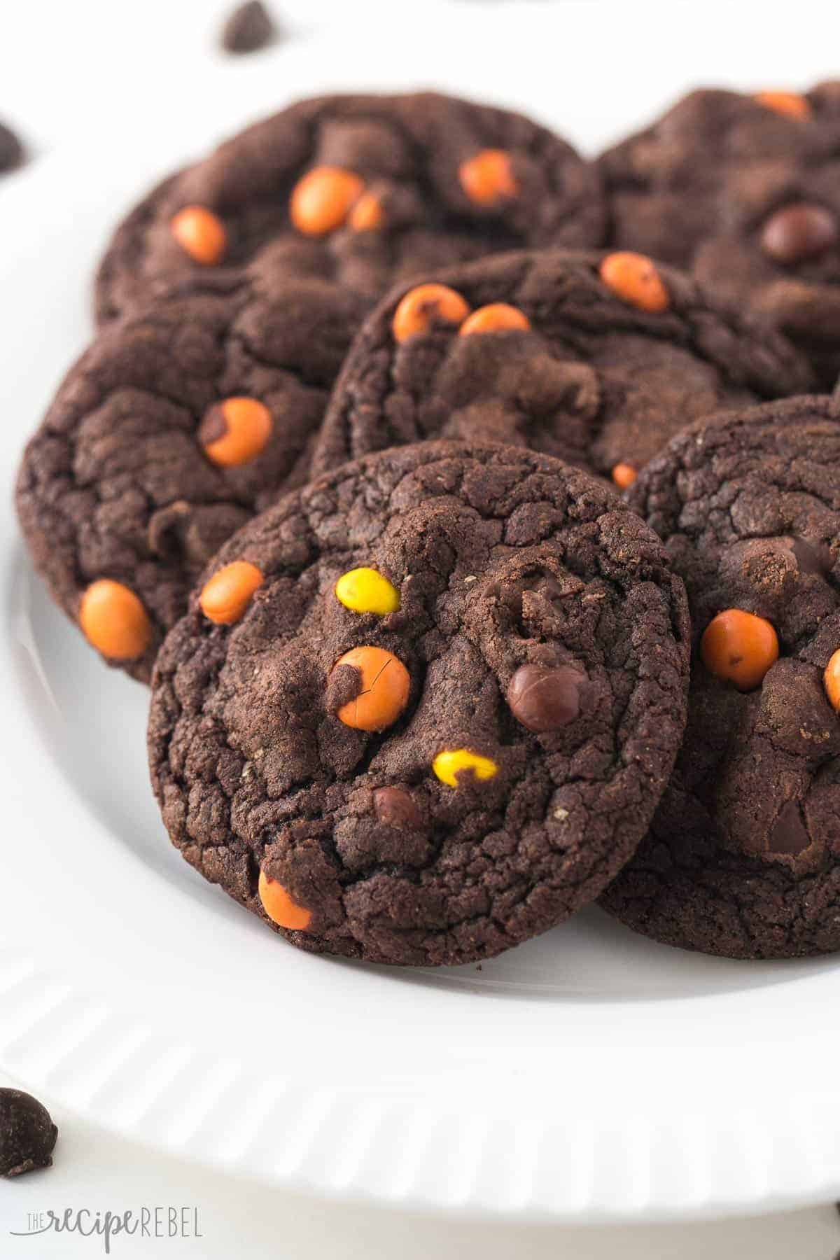 Fudgy, chewy double chocolate cookies loaded with Reese's Pieces! Chocolate peanut butter perfection :)