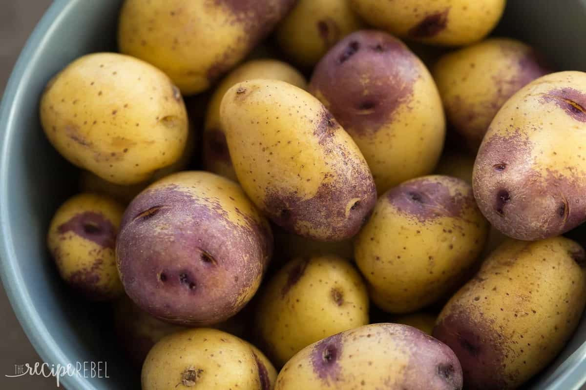 little white and purple potatoes close up in grey bowl