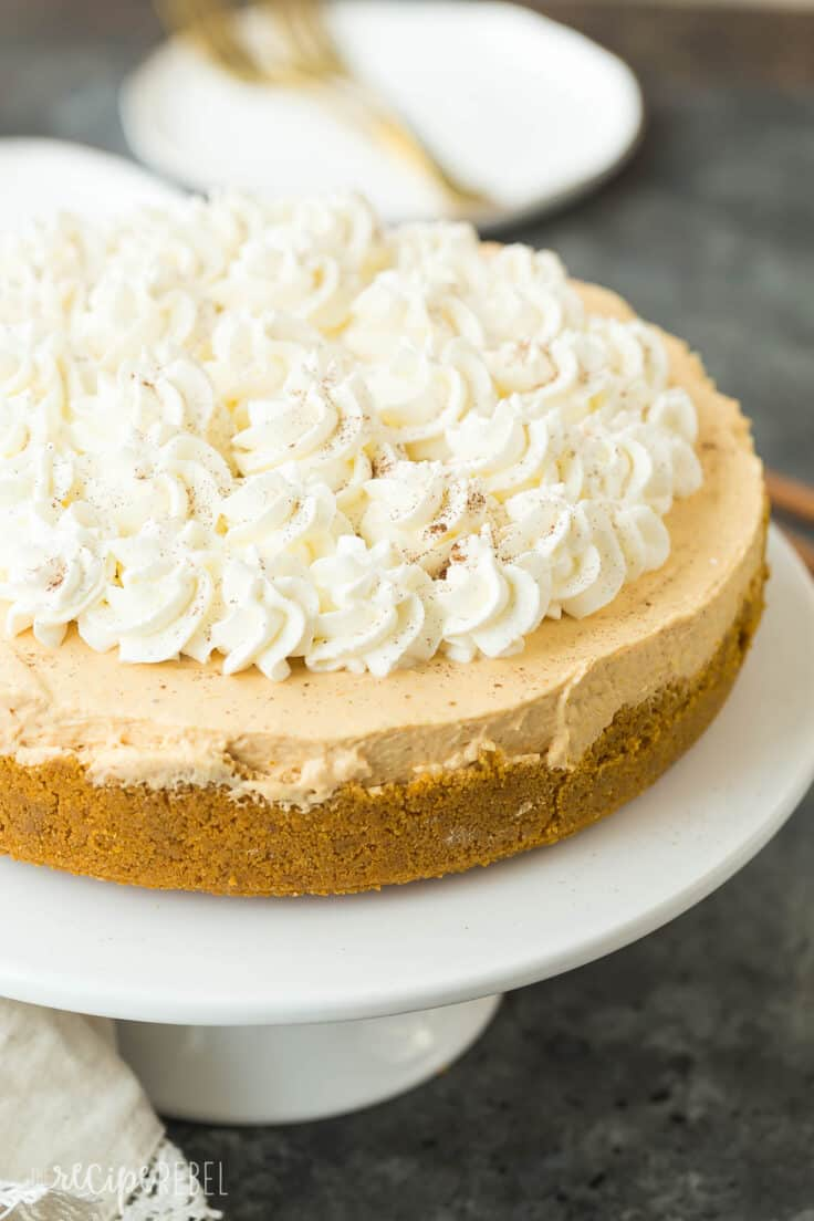 no bake pumpkin cheesecake with whipped cream on white plate whole