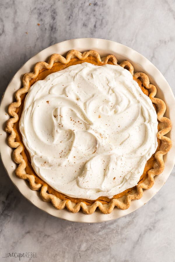 overhead image of turtle pumpkin pie with whipped cream
