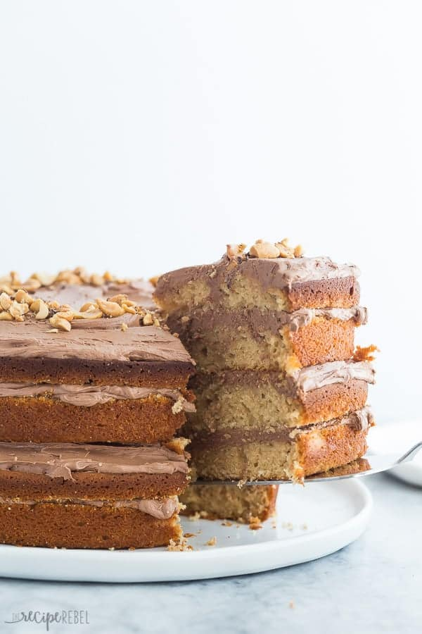 peanut butter cake with chocolate frosting serving