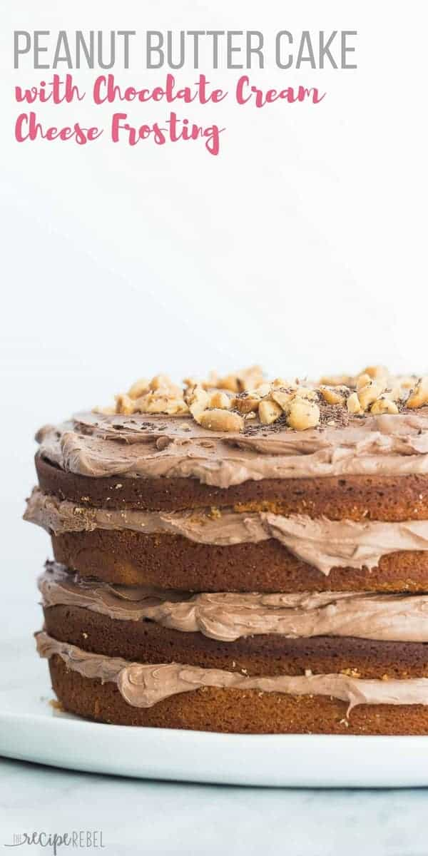 peanut butter cake with chocolate frosting on plate