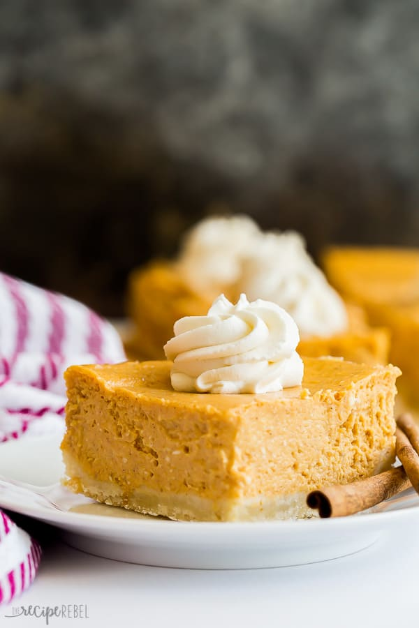 pumpkin cheesecake single on a plate with whipped cream on top and purple striped towel on the side