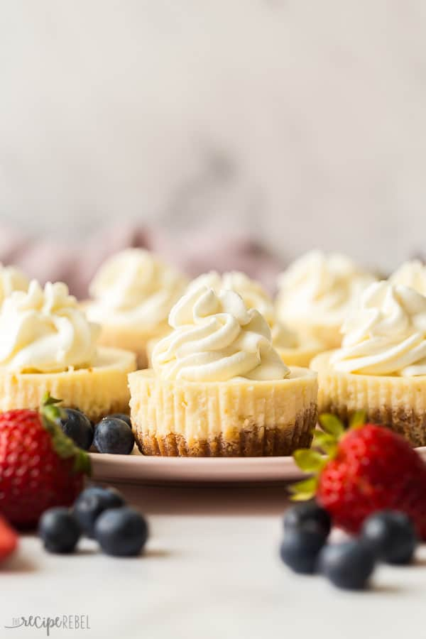 cheesecake cupcakes with whipped cream on a plate with fresh berries on the side