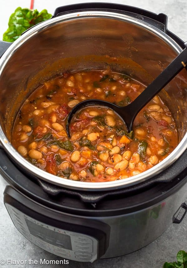 instant pot spicy white bean stew