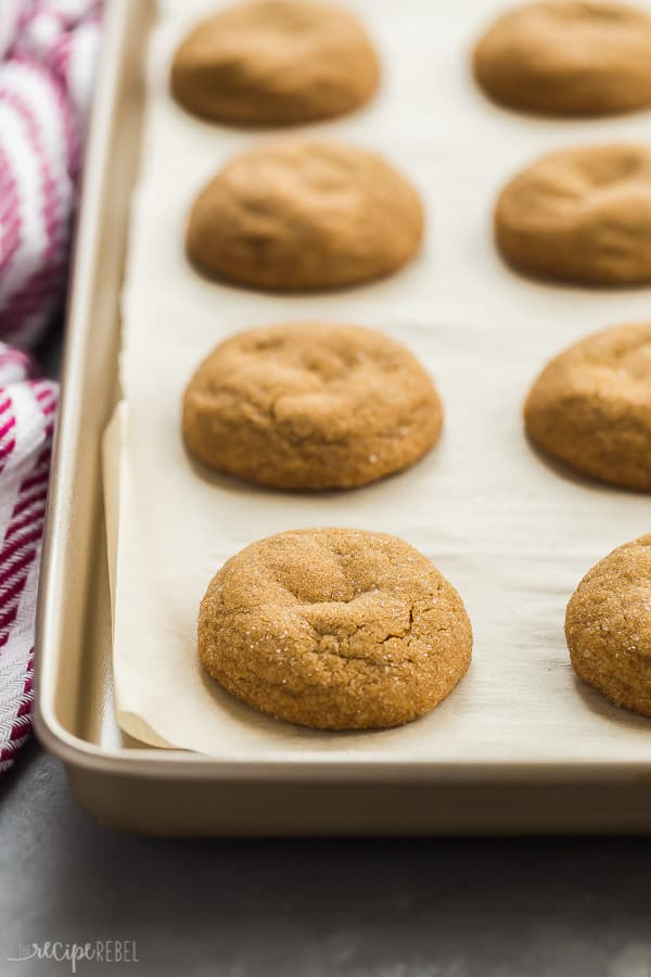 sheet of molasses cookies