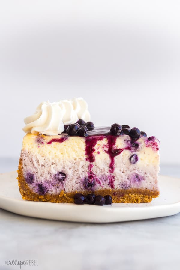 blueberry cheesecake slice profile with blueberry sauce and whipped cream