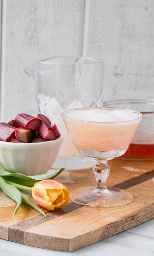 Rhubarb Pisco Sour in glass with rhubarb in backgroun
