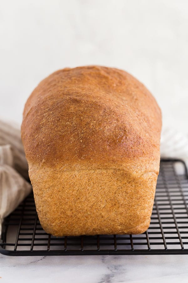 whole loaf of whole wheat bread on cooling rack