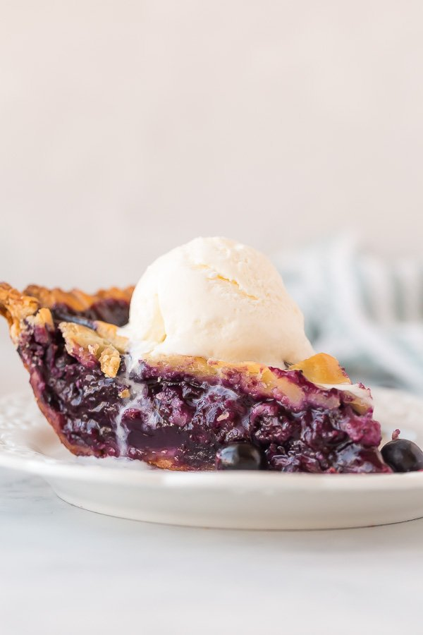 slice of blueberry pie close up with ice cream