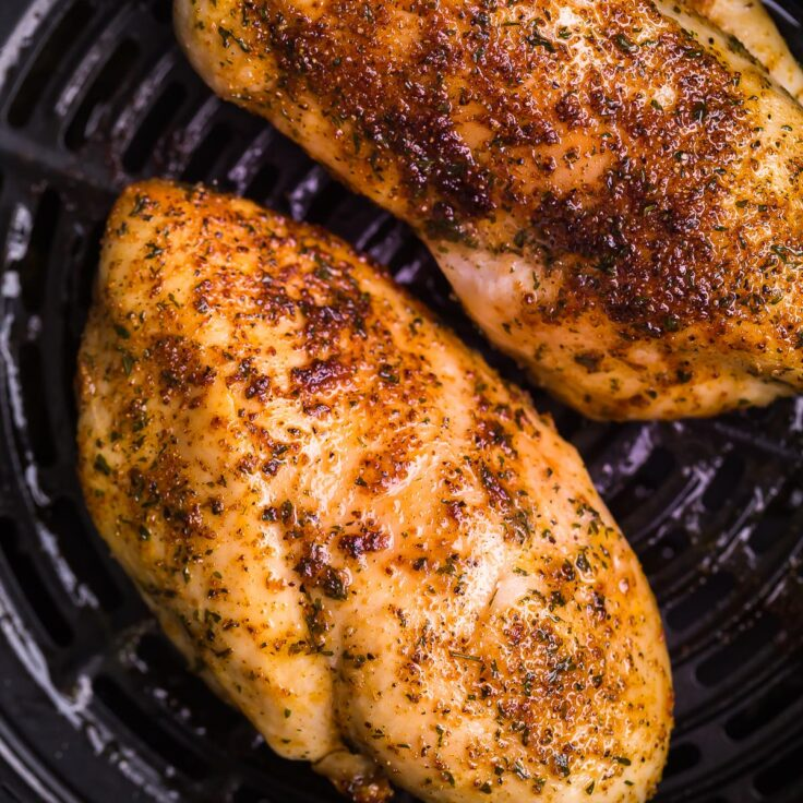 square image of air fryer chicken breast close up