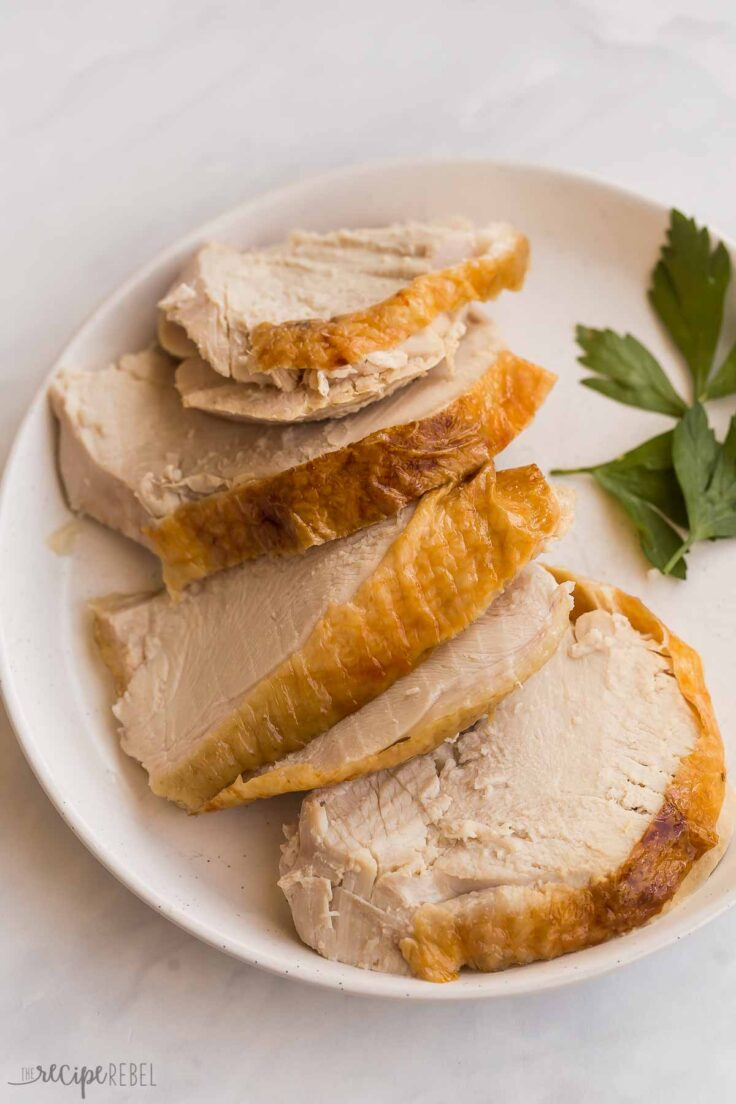 sliced turkey breast with golden skin on a plate